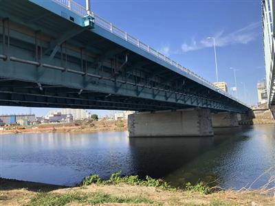 飛び込み 多摩川