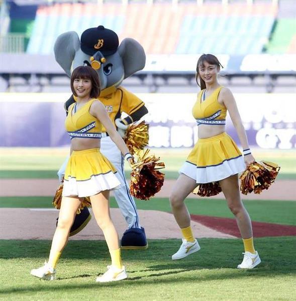 台湾 チア リーダー 野球