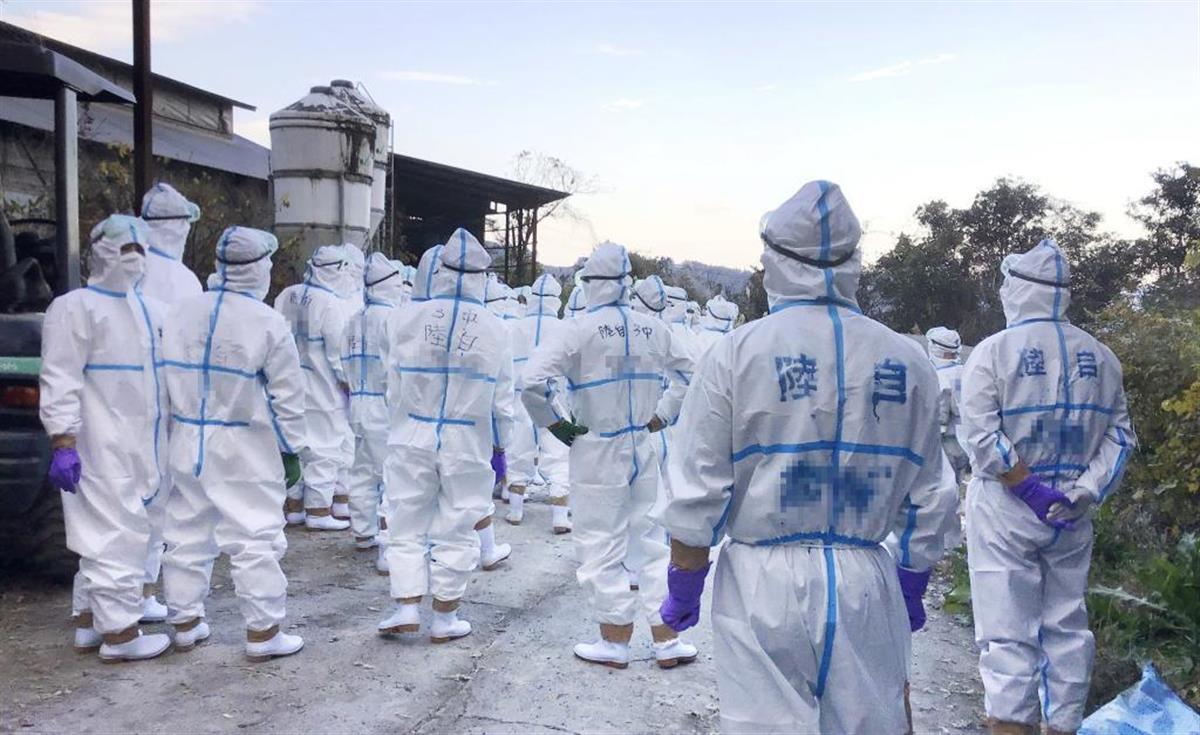 殺処分のため、宮崎県の養鶏場に集まった自衛官ら(宮崎県提供、一部画像処理しています)