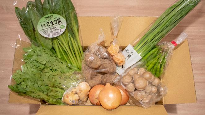 坂ノ途中のお野菜セット内容例